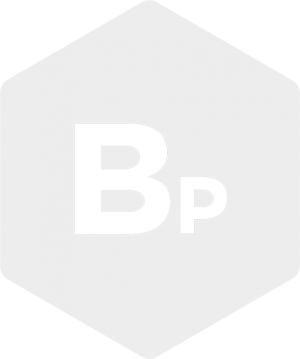 logo_BP_white